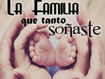 la familia que tanto soñaste