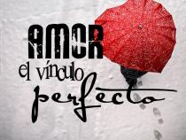 amor el vinculo perfecto